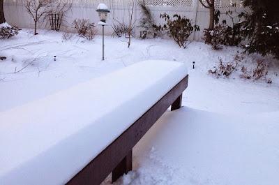 banquillo congelado por las bajas temperaturas