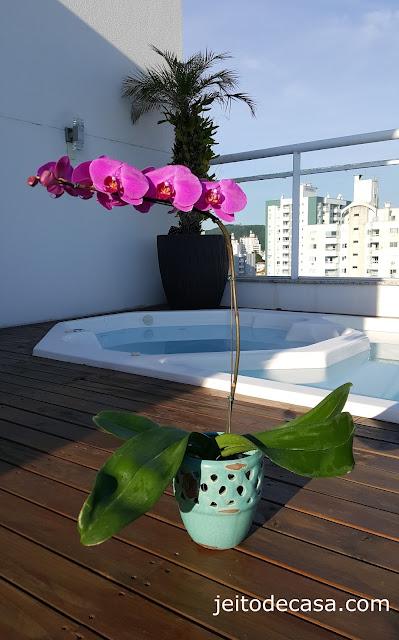 linda-orquidea