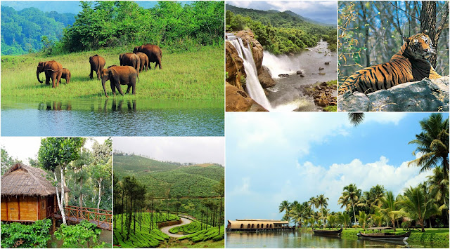 Natural Attractions of Kerala