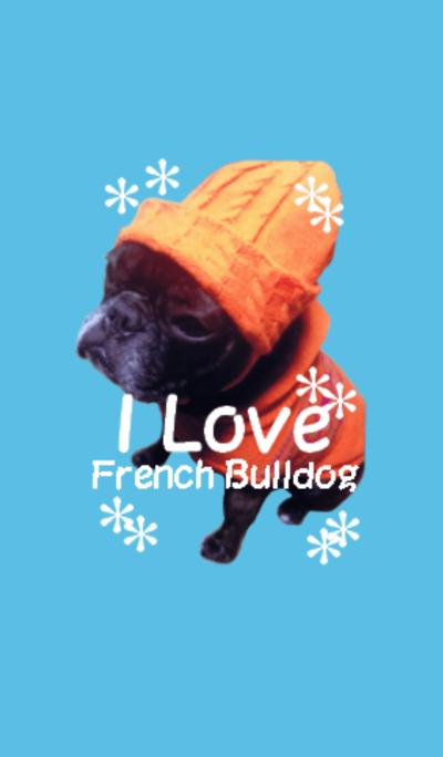 French bulldog.garuko