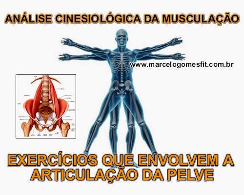 Cinesiologia - Articulação da Pelve, Quadril