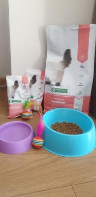 online kedi maması alışverişi