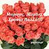 Δευτέρα 17 Ιουλίου 2017: Μαρίνος, Μαρίνα Χρόνια Πολλά!!!.......giortazo.gr