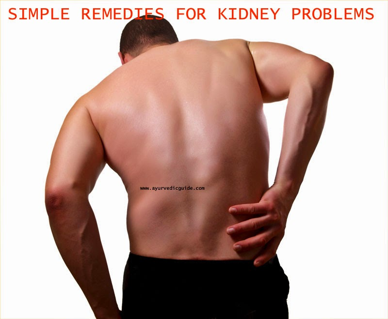 Nice kidney location pattern human anatomy images human kidney pain location ccuart Image collections
