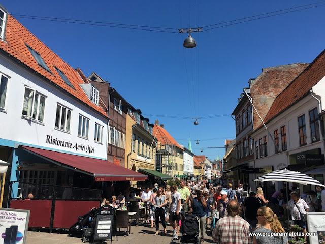 Excursión a Elsinor desde Copenhague