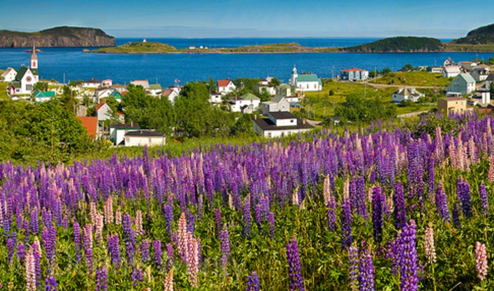 Tour of Newfoundland and Labrador