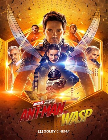 Ant-Man and the Wasp (2018) HDrip (Hindi Dubbed)