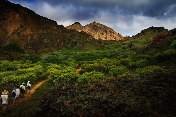 馬賽Kyo-加拉巴哥群島