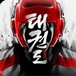 Taekwondo Game v1.6.12