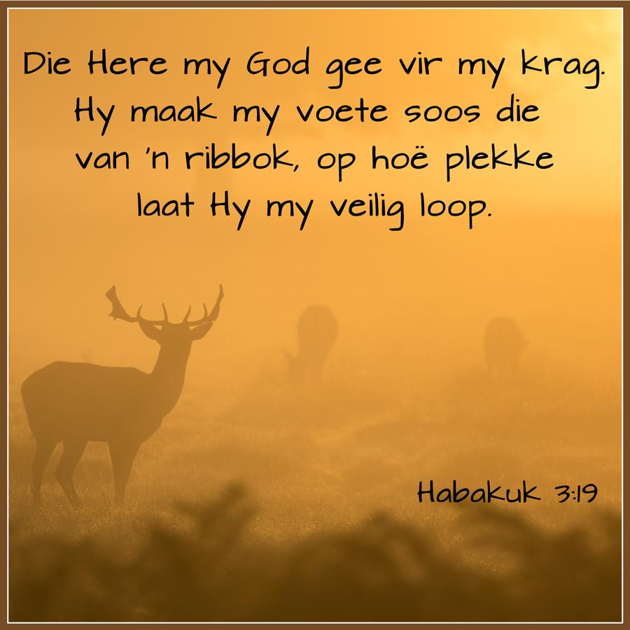 Die Here my God gee vir my krag. Hy maak my voete soos die van 'n ribbok, op hoë plekke laat Hy my veilig loop.  Habakuk 3:19 #afrikaans #bybelvers