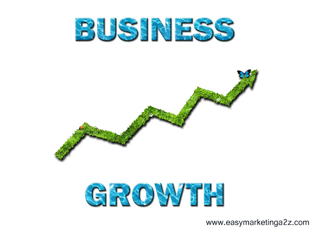 Business Growth 7