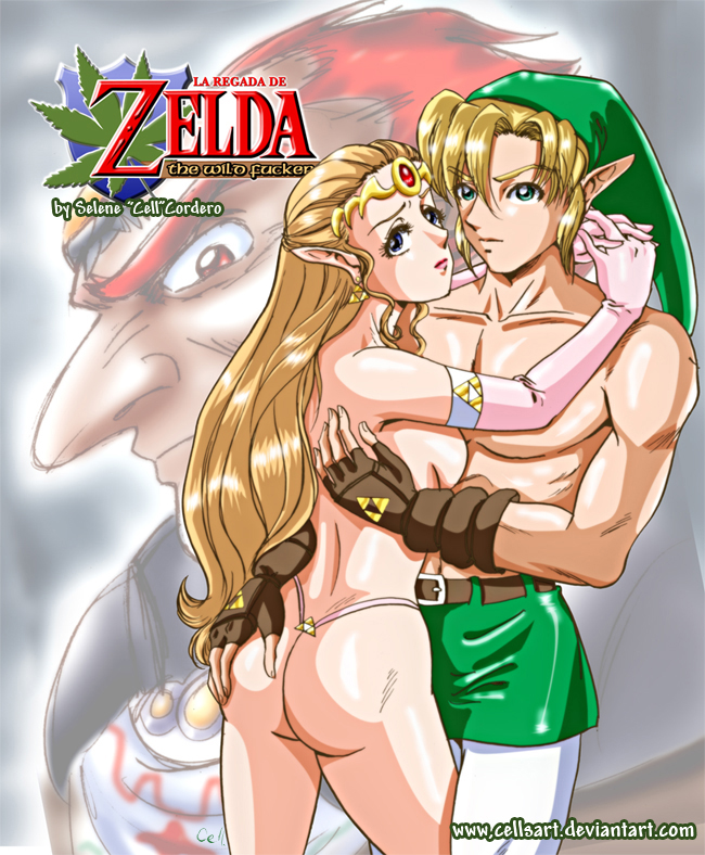 Zelda And Link Sex 28