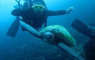 Galapagos Travel Basics