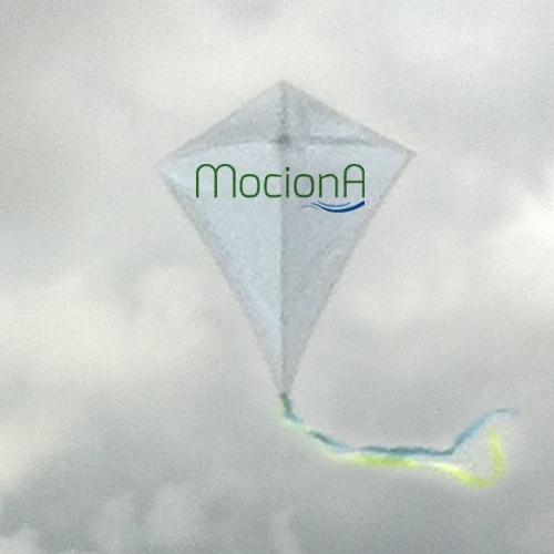 http://mociona.upplication.com/main.html#!/eshop/este-agosto-precio-especial-100987
