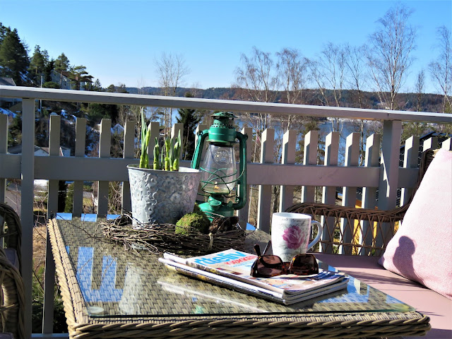 Vårblomster i krukker har ankommet hytta - Nærbilde av stilleben og vårblomster ved kurvmøblene på hytta
