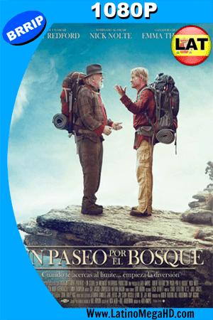 Un Paseo por el Bosque (2015) Latino HD 1080P ()