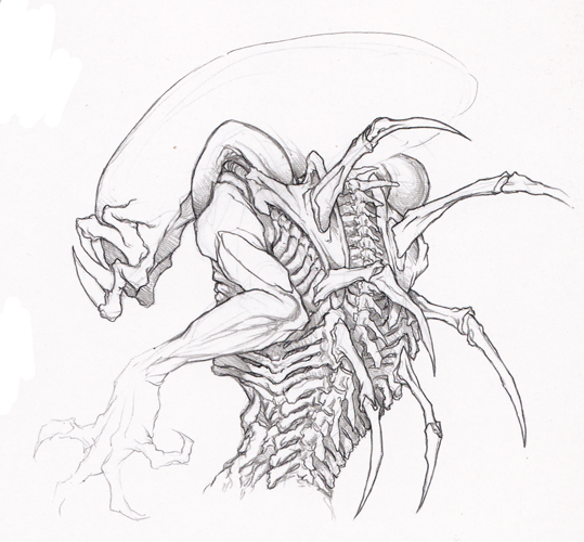 Related Keywords & Suggestions for predalien drawings