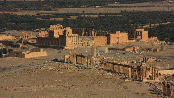 Palmyra baalshamin