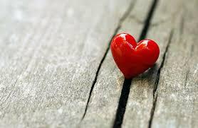 Perjalanan Mencari dan Menemukan Cinta