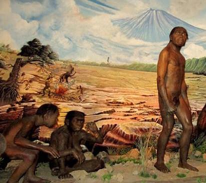 suku primitif bangsa israel atau disebut suku amori