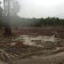 Tercer Tribunal Ambiental autoriza renovar paralización de empresa por amenaza a sitio arqueológico Monteverde