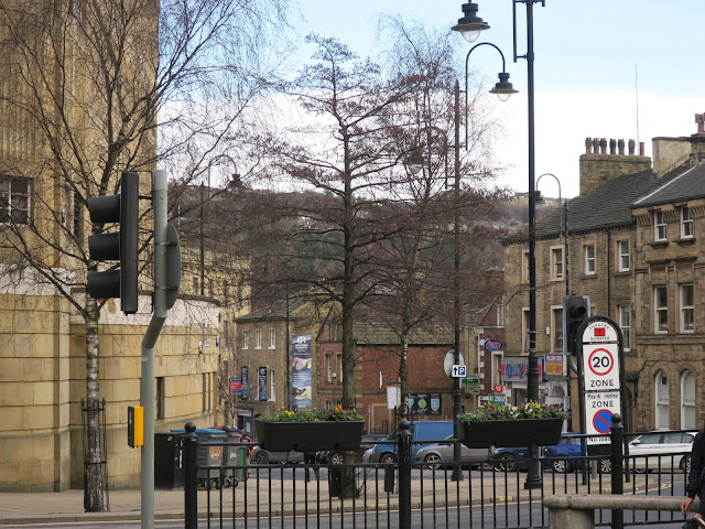 Alder tree flanked by Silver Birches opposite The Victoria Theatre in Halifax. UK.
