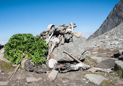 Le ossa si sono conservate a causa del particolare clima freddo e secco