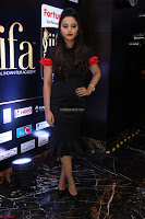 Meghana Gore looks super cute in Black Dress at IIFA Utsavam Awards press meet 27th March 2017 14.JPG