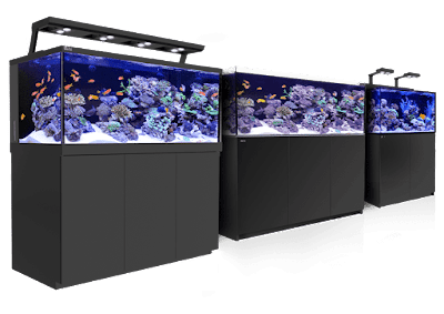 Daftar Harga Akuarium Rakitan Dan Akuarium Pabrikan Terbaru