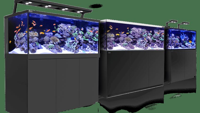 Daftar Harga Akuarium Rakitan Dan Akuarium Pabrikan Terbaru Ikanesia Id