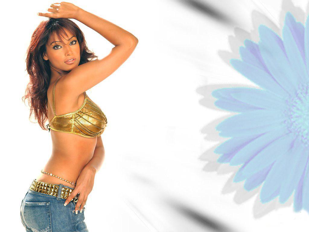 Indian Hot Actress Pictures Bollywood Hot Actress Bipasha -4795