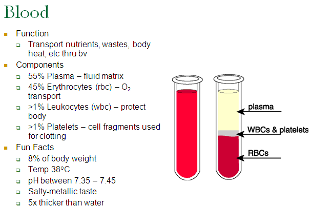 blood,artery,platelets,red blood cell,white blood cell,erythocytes,leukocytes
