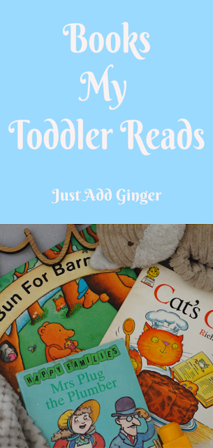 flat lay image of children's books and toys.