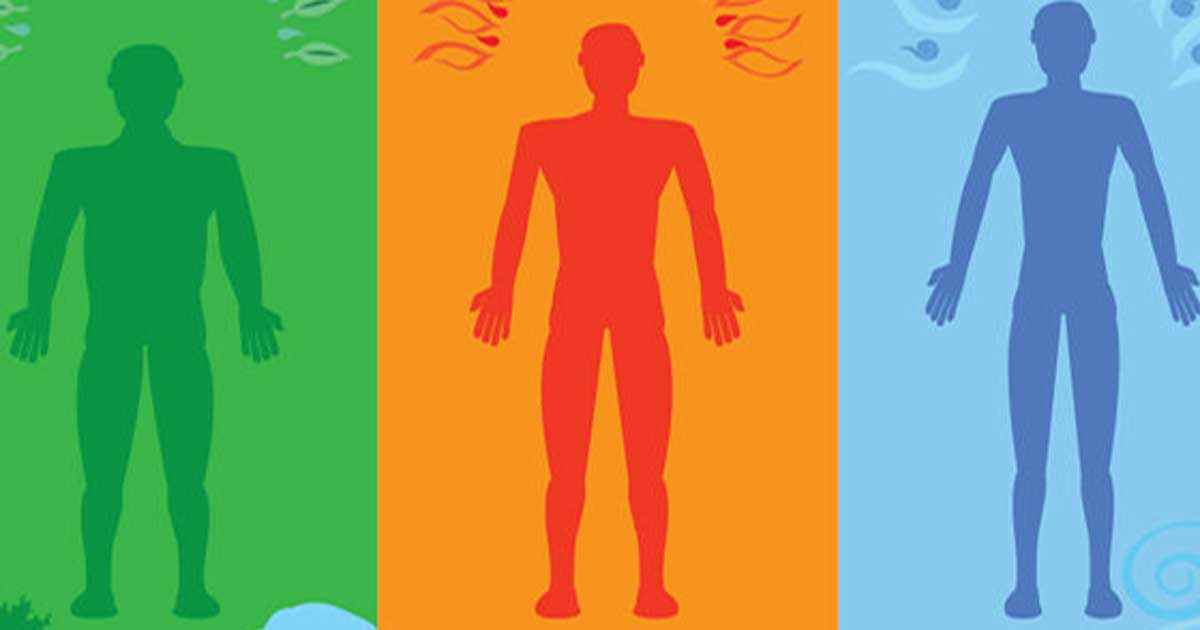 Which Of The Three Body Energies Is Your Most Dominant?
