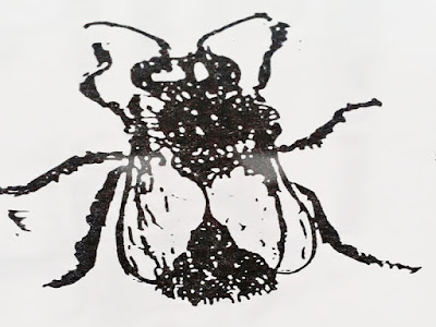 Gambar Manfaat Dan 7 Keistimewaan Lebah Madu Dalam Islam