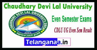 Chaudhary Devi Lal University  BCA BBA BTM 2nd 4th 6th Sem Result