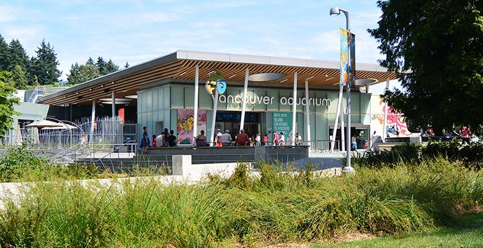 Canada, Columbia Británica, Vancouver, vancouver aquarium, que visitar en Vancouver, que hacer en Vancouver, Vancouver que visitar,