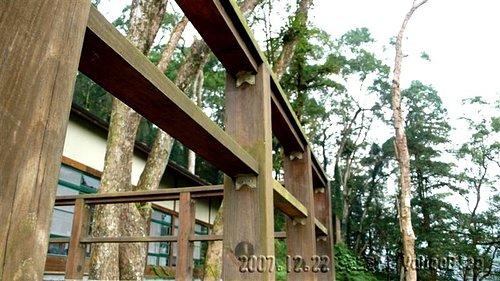 內湖國小全台最美的森林小學 南投鹿谷景點