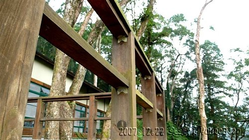 內湖國小全台最美的森林小學|南投鹿谷景點