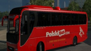 Polski Bus Skin for Man Lions Coach