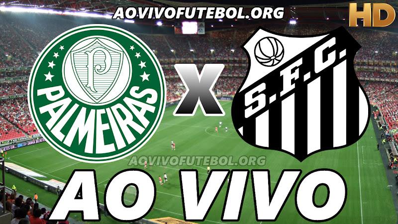 Palmeiras x Santos Ao Vivo Hoje em HD