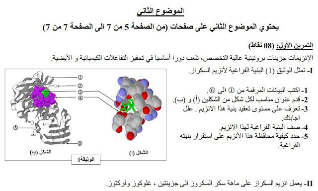 نماذج اختبارات العلوم الطبيعية الفصل الاول للسنة الثالثة ثانوي