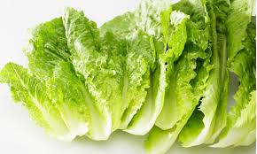 Benefits of lettuce
