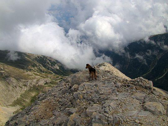W stronę doliny Byndericy.
