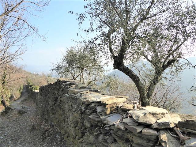 muri a secco lungo il sentiero rapallo chiavari