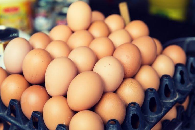 Ritiro Alimenti: Uova fresche, allerta del ministero della salute per la salmonella.