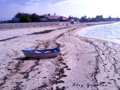 Playa Telchac Puerto Yucatan Mexico