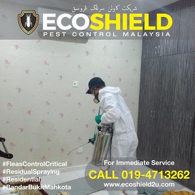 Pest Control Selangor Pest Control Malaysia