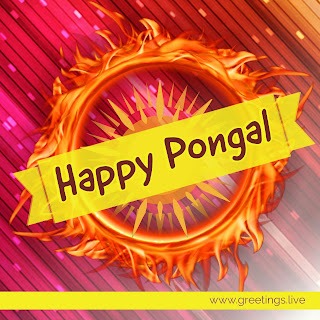 Pongal wishes latest digital Greetings images.jpg