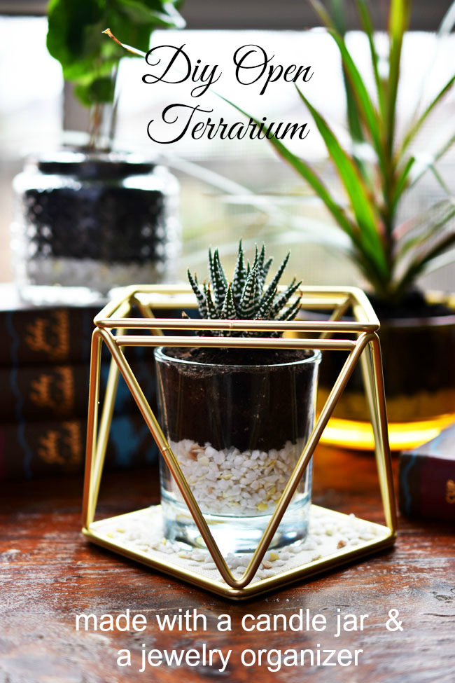 quick diy open terrarium - made with a cleaned out candle jar and a jewelry or accessory organizer